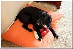 Tutorial: Make a large dog bed