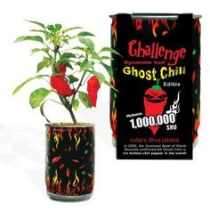 Trinidad Scorpion Pepper In A Can Hot Chili Plant Home Grow Kit Novelty Fun Gift Canning Hot Peppers, Cooking Peppers, Ghost Pepper Plants, Mushroom Grow Kit, Bhut Jolokia, Ghost Peppers, Pepper Seeds, Edible Garden, Country