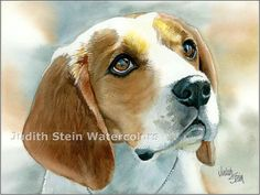 BEAGLE Hound Dog 15x11 Giclee Watercolor Print by k9stein on Etsy, $40.00