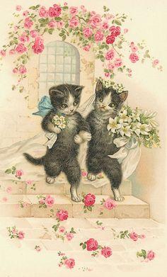 Bride and groom cats vintage postcard