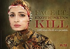 exotic skin kills-animal awareness