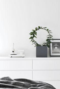 Stylizimo / Greenery in the bedroom // #Architecture, #Design, #HomeDecor, #InteriorDesign, #Style