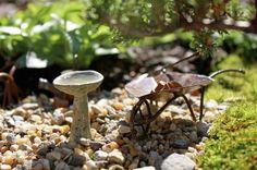 Mini Gardening, la nueva moda en jardines - Makeupdecor