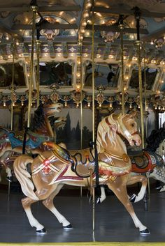 Pictures of Maryland: Glen Echo ~ Antique carousel in Glen Echo, Maryland - photo via PlanetWare All The Pretty Horses, Beautiful Horses, Nocturne, Carosel Horse, Glen Echo, Amusement Park Rides, Wooden Horse, Painted Pony, Merry Go Round