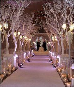 Narnia Theme 🦁❄🌲
