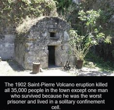 The 1902 Saint-Pierre Volcano eruption killed all people in the town except one man who survived because he was the worst prisoner and lived in a solitary confinement cell. source image via. Epic Facts, Weird Facts, Fun Facts, Daily Facts, Solitary Confinement, Who People, Spooky Places, Funny Jokes, Funny Gifs