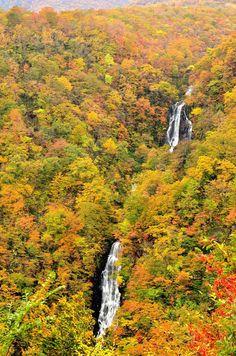 Zao, Miyagi, Japan | Yasushi Miyazawa 蔵王 滝見台より
