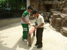Los niños fueron partícipes de la actividad realizada por nuestro Depto. de Educación para los papiones.