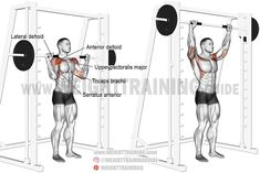 Smith machine standing overhead press exercise instructions and video Deltoid Workout, Calisthenics Workout, Smith Machine Workout, Workout Machines, Weight Training Workouts, Gym Workouts, Workout Routines, Best Shoulder Workout, Shoulder Exercises