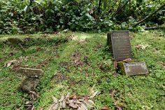 Grab von Dian Fossey, Karisoke, Vulkan-Nationalpark, Ruanda
