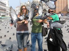 The Most Inexplicable Foreign Laws Feeding the pigeons in St. Marks Square