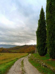Casentino, Arezzo, Tuscany, Italy