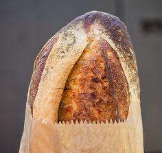 Pão Selvagem  Fermentação natural