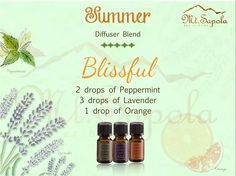Diffuser Blends, Aromatherapy, Peppermint, Bliss, Lavender, Essential Oils, Pure Products, Mint, Essential Oil Uses