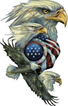 #USA #AMERICA #FREEDOM
