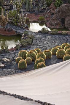 Jardín de Cactus Lanzarote Canarias, Spain ♥ Inspirations, Idées & Suggestions, JesuisauJardin.fr, Atelier de paysage Paris, Stéphane Vimond Créateur de jardins ♥