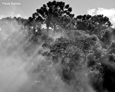 Casa da Paula Fotografia: Cambará do Sul - Cânions do Itaimbézinho e do Fort...