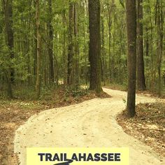 Have you found Trailahassee yet?   Visit Tallahassee created this awesome resource to help you explore all of Tallahassee's trails and outdoor spaces.  Click to check it out!