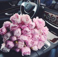 flowers car mercedes love instalove flores amor amazing luxo mercedesbenz instacar. Black Bedroom Furniture Sets. Home Design Ideas