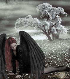 Dark Angel--gotta hate the nights when your feathers hang out....