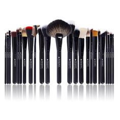 SHANY PROFESSIONAL SIGNATURE 24 PIECE BRUSH SET This set of 24 brushes would make any makeup artist envious, which makes sense: It was designed in partnership with those in the biz.  Collection of 24 most essential brushes Oak wood handle, anti-bacterial treated bristles