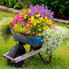 Garden is a place where you can relax any time of day. Spend some of your time to make your garden look really awesome. There are a lot of...