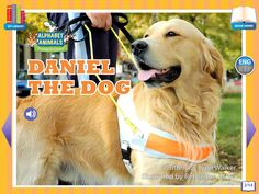 Footsteps2Brilliance's Daniel The Dog, 1 of 26 ebooks in our Alphabet Animals series library of non fiction ebooks.  A whimsical approach to materials focused on stem topics with 40 additional games in this series, beautifully illustrated ENG/ESP Bilingual interactive ebook for the pre-K through third grade learner.