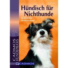 Uberlegen Hündisch Für Nichthunde   Hunde