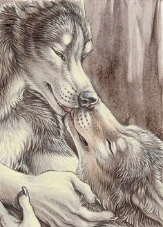 Anime Furry, Anime Wolf, Furry Wolf, Furry Art, Fantasy Creatures, Mythical Creatures, Wolf Warriors, Werewolf Art, Real Werewolf
