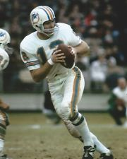 Bob Griese Miami Dolphins 1967-80. HOF Class '90.