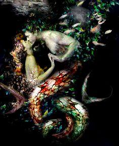 Mermaid and merman - Sea-kiss Real Mermaids, Mermaids And Mermen, Fantasy Mermaids, Mythical Creatures, Sea Creatures, Sea Siren, Mermaid Fairy, Mermaid Cove, Mermaid Kisses