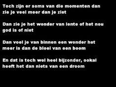 Toon Hermans - Het Wonder
