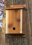 Birdhouses  Winter Retreat - Clear Coat Backyard -- This is an Amazon Associate's Pin. Click the image to visit the website for more info.