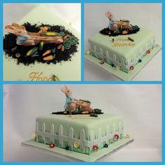 Peter Rabbit theme cake. Flavour: lemon with lemon buttercream