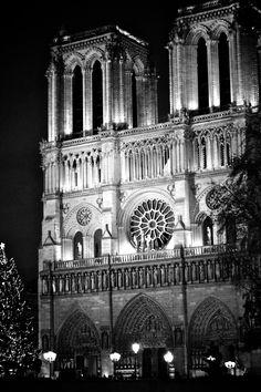 Notre Dame de Paris (December 2011) - Own picture