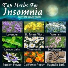 Top Herbs for Insomnia Lavender  St. Johns Wort Valerian Lemon Balm Chamomile Motherwort Passion Flower California Poppy Magnolia Bark There are many herbs and spices that aid sleep. Just like with prescriptions, you should research possible side effects and discuss the herb with your physician. Kava Kava is often recommended but should be avoided if you drink large amounts of alcohol or have liver problems.