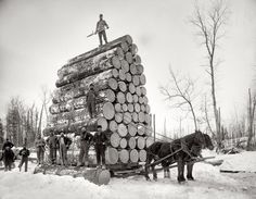 logging...amazing that the logs ever got anywhere.  Ok, I think this had to just be posed but, I won't feel bad for piling the cotton high.