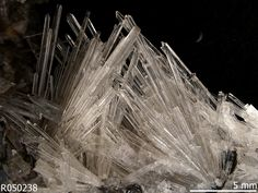 Scholzite, CaZn2(PO4)2•2(H2O) . near Blinman, South Australia, Australia Source: Marcus Origlieri