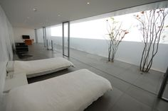 Minimalist House / Shinichi Ogawa & Associates