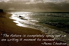 Pema Chodron Quote of the Day
