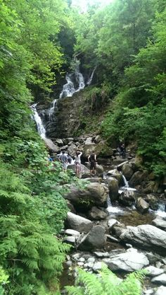 Fairy Glen - Betws-y-Coed - Beoordelingen van Fairy Glen - TripAdvisor Wales Mountains, Fairy Glen, Snowdonia National Park, Forest Park, Mountain Resort, North Wales, Great Places, Trip Advisor, National Parks
