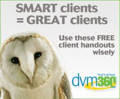 How big should your #veterinary clinic be? - dvm360 ...