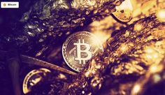Mining Bitcoin for Profit Is Getting Harder. Here's Why