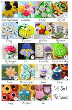 1. Black Eye Susan by Lisa, The Bearfoot Baker  2. Carnation by Meaghan, The Decorated Cookie  3. Cherry Tree Flower by Pam, Cookie Crazie  4. Daffodil by Georganne, LilaLoa   5. Daisy by Stephanie, Ellies Bites  6. Dogwood by Marian, Sweetopia  7. Gerbera by Paula, Vanilla Bean Baker  8. Hyacinth by Amber, SweetAmbs  9. Hydrangea by Kim, The Partiologist  10. Iris by Cristin, Cristin