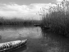 albufera 10, via Flickr.