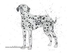 Dalmatian art PRINT painting of Dalmatian by rachellelevingston, $16.00