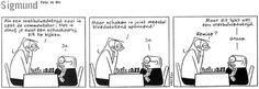 Sigmund in een schaak cartoon over schaken en voetbal