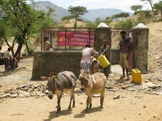 non sempre bere acqua pulita è semplice Nel Tigray in Etiopia se sei fortunato è pesante....