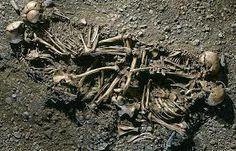 skeletons - Google Search