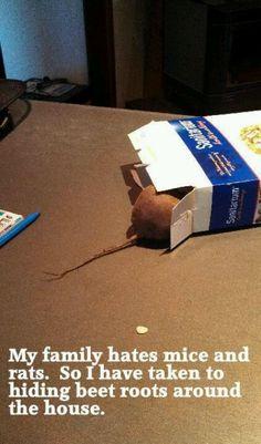 More foodie pranks!